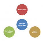 Healthy Movement Diagram