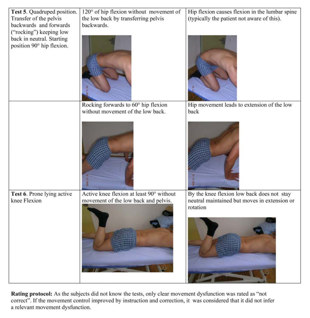 Movement control tests of lower back pain